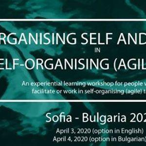 Organising Self and Others in Self-Organising Team