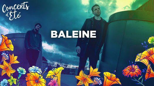 BALEINE - Concerts d'Été au Parc Sainte-Marie
