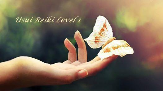 Usui Reiki Level 1 - Training and Attunement