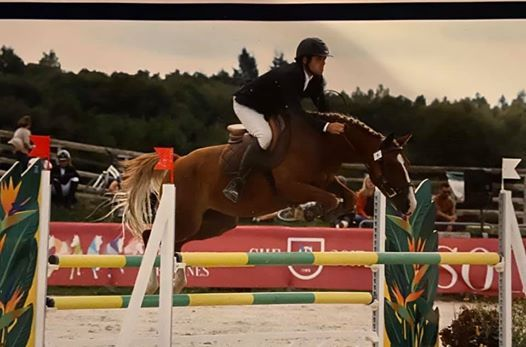 CSO Lucerne Jump Association - Les Ecuries du Thar