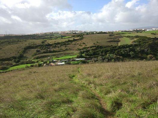 Trail / Aventura pelos Trilhos e encostas das ribeiras da lage, 20 December | Event in Oeiras | AllEvents.in