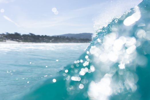 The 39th Annual Carmel Surfabout