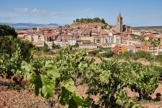Rioja Wine Tasting & Class, 8 July   Event in Greater Sudbury   AllEvents.in