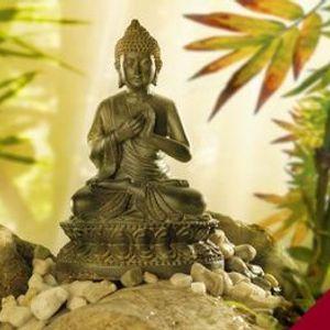 Curso de Mindfulness Online Mindfulness para la Vida