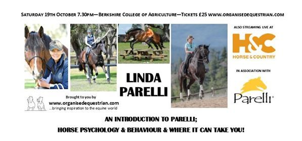 An Introduction to Parelli with Linda