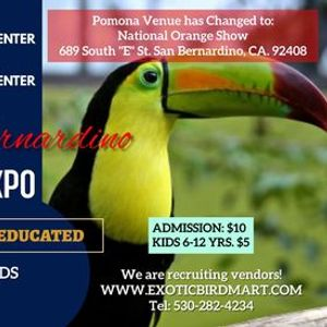 PomonaSan Bernardino Exotic Bird Expo