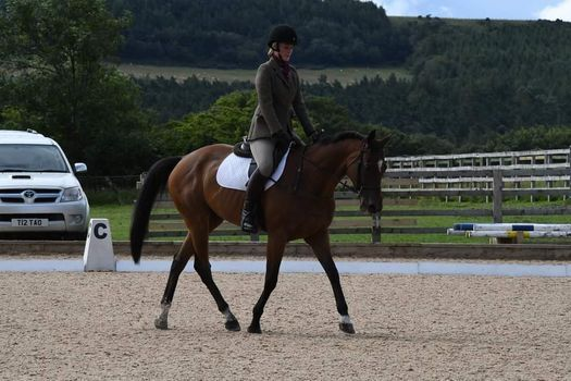 Dressage Competition, 1 August   Event in Durham   AllEvents.in