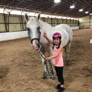 Confidence Academy with Horses
