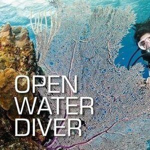 SSI Open Water Diver & Junior Open Water Diver