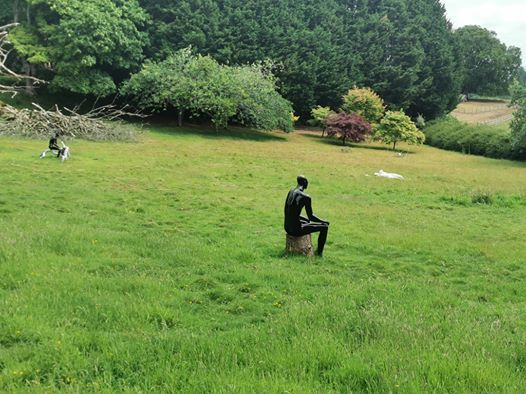 Creative Wellbeing Retreat Day at Devon Sculpture Park