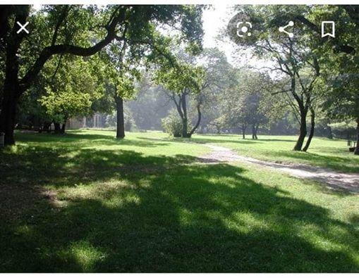 Passeggiata a Sei Zampe al Parco Talon