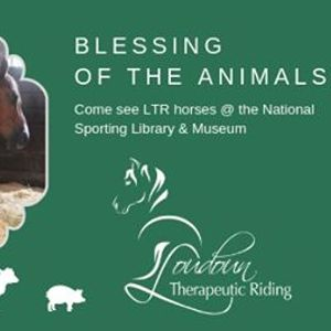 LTR at the Blessing of the Animals