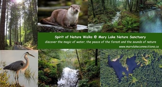 Nature Trail Walk  - self-guided   Event in Victoria   AllEvents.in