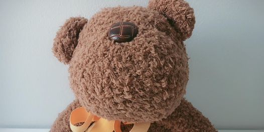 Sock Crafting - Tabby Teddy, a Domi Series Classic, 23 May   Event in Jurong   AllEvents.in