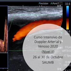 Curso Intensivo Doppler Vascular Arterial y Venoso Nivel II 2020