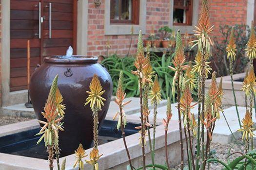 Kloof Conservancy Open Gardens