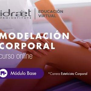Curso Online Modelacin Corporal