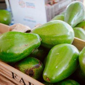 Mercado de Alimentos Santurce