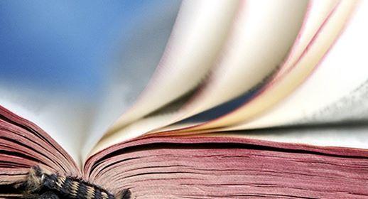 Basisinfo Bibel ber den Umgang mit der Heiligen Schrift