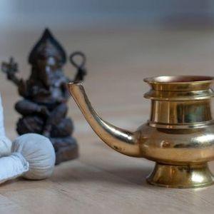 Ayurveda pulsdiagnose & livsstilssession med Abina  Ayurveda by Grace Tours