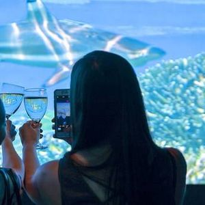 Sip n Sea at National Geographic Encounter - Ocean Odyssey