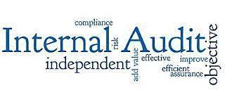 Internal Auditor 201 Internal Audit Senior - Virtual  Event