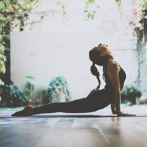 Online Yoga from the Garden