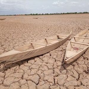 WEBINAR - Migration und Klimawandel