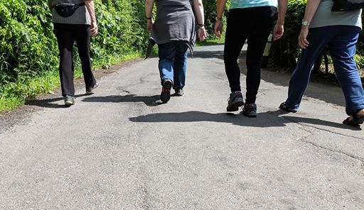 Community Walk Leader Course
