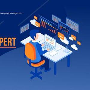 Become a Programming Expert (PE)