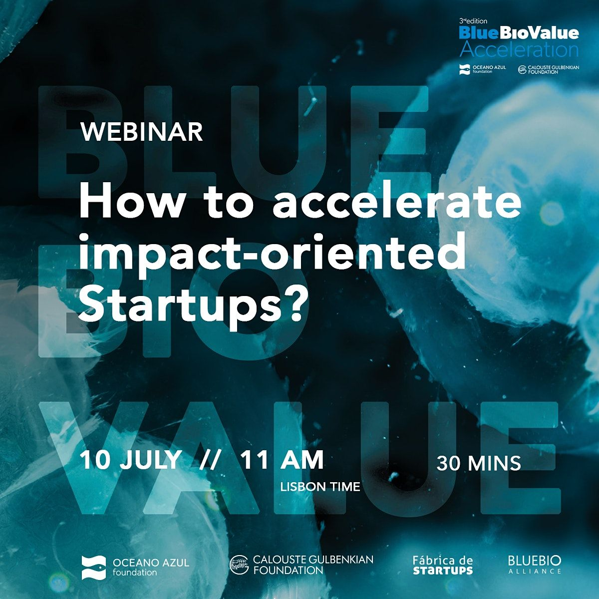 Blue Bio Value 2020 How  to accelerate impact-oriented startups