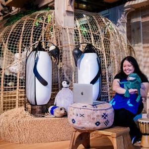 Online Family Program  Story TimeLive from Noahs Ark