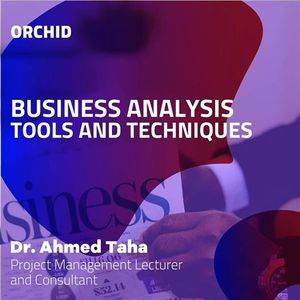Business Analysis Tools and Techniques
