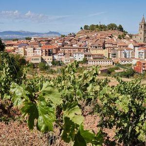 Rioja Wine Tasting & Class