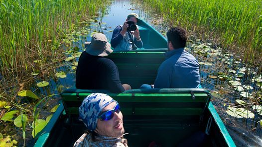 Private Bird watching Day Trip to the Danube Delta