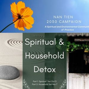 Spiritual & Household Detox - presented by the Nan Tien 2030 Campaign