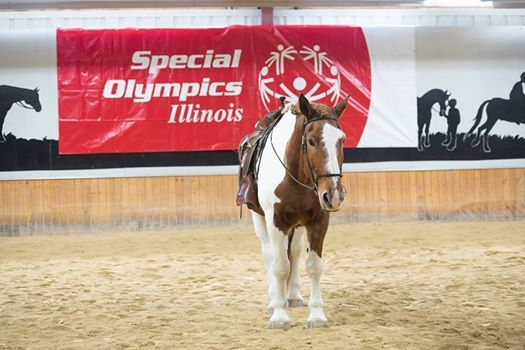 Special Olympics Illinois Fall Games Equestrian Venue