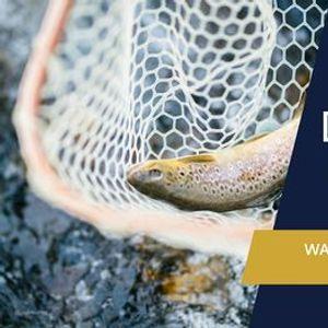 River Development School  Waterway Identification  Management
