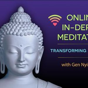 November online in-depth course - Transforming adversity (series of 4)