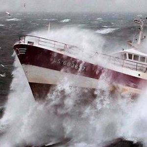 Crisis Management Navigating the Storm - A Virtual Learning Journey