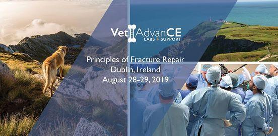 VetAdvanceCE Principles of Fracture Repair