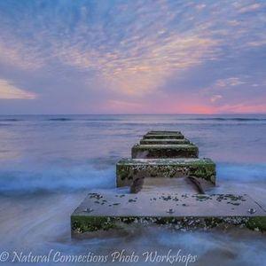 Nature & Landscape Photography - Online