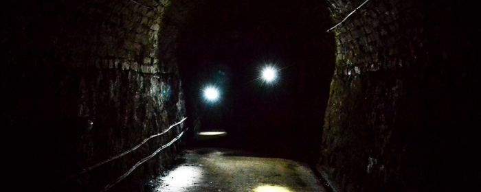 The Virtual Victoria Tunnel Experience, 21 March | Online Event | AllEvents.in