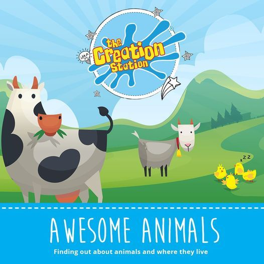 Baby Discover (6m-18m) - Awesome Animals - Horsehay Village Hall | Event in Telford | AllEvents.in