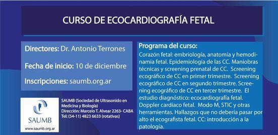 Curso de Ecocardiografía Fetal (e-learning) 2020 2da edición, 10 December   Event in Buenos Aires   AllEvents.in