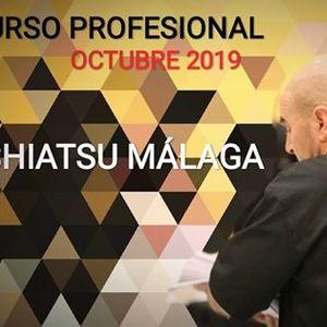 CURSO Profesional Shiatsu Mlaga
