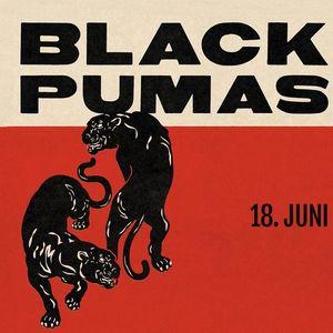 Black Pumas  Rockefeller