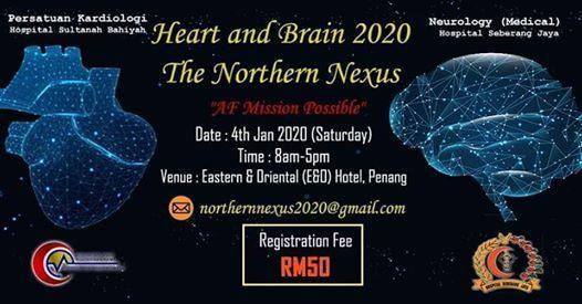 Heart and Brain  The Northern Nexus