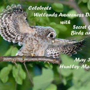 Wetlands Awareness Day