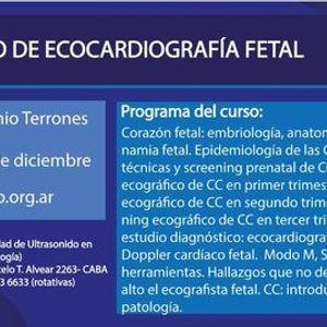 Curso de Ecocardiografa Fetal (e-learning) 2020 2da edicin